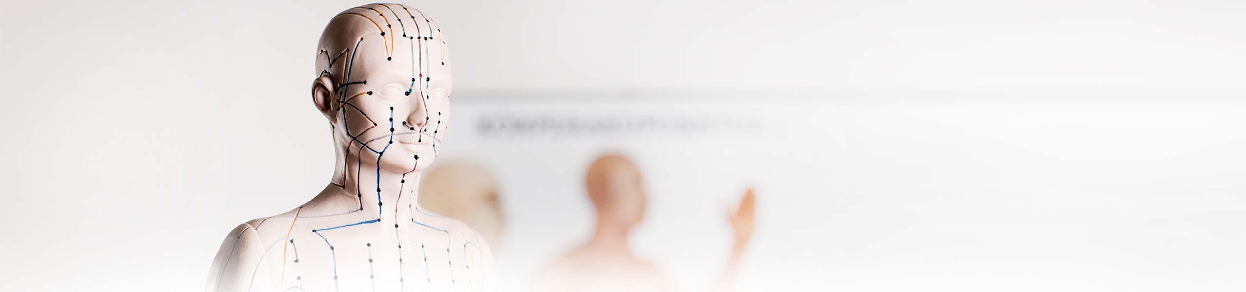 sportopaedie heidelberg akupunktur header