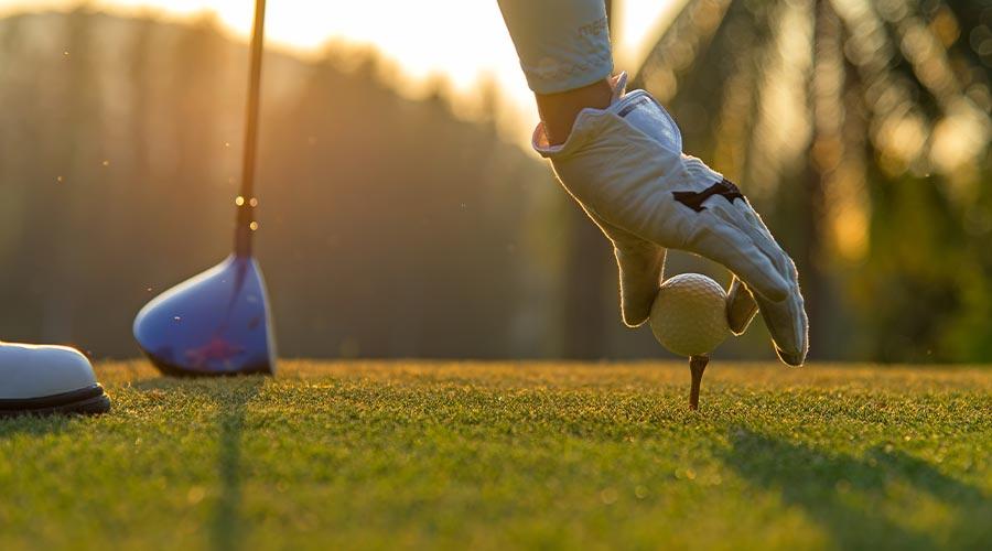 sportopaedie golf - Sportopaedie 2019