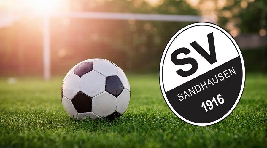 svs liga sportopaedie - Sportopaedie 2019